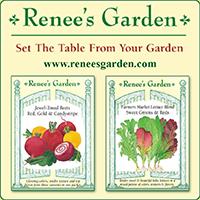 Renees Garden Ad