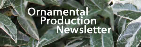 Ornamental Production Newsletter