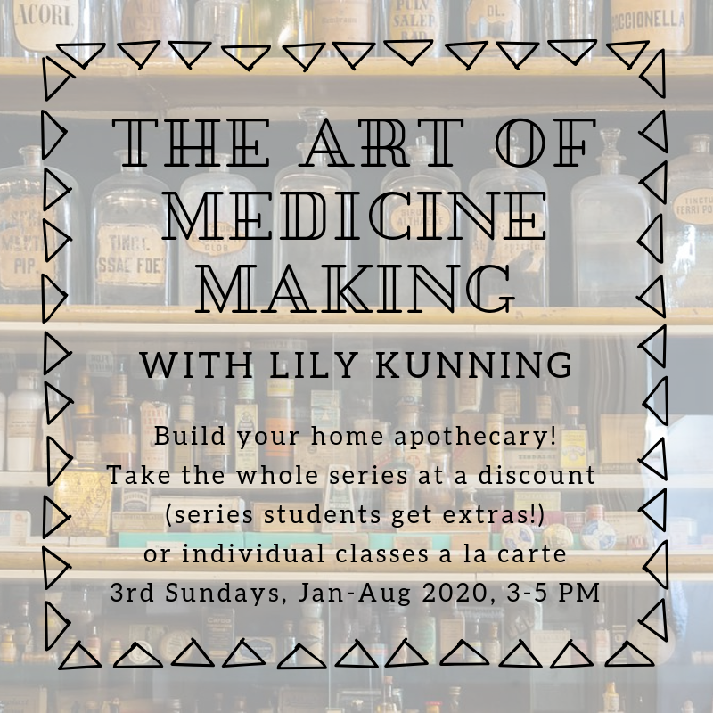 The Art of Medicine Making series by Lily Kunning