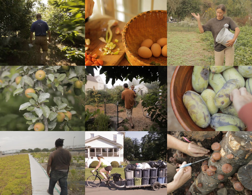 collage of images on permaculture farms