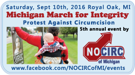 Michigan March for Integrity