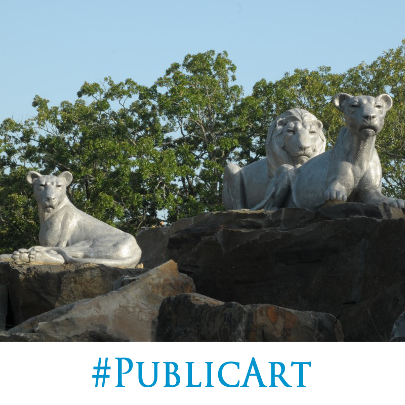 """""""Lion Pride"""" by Darrell Davis and the National Sculptors' Guild  is installed at the roundabout as you enter the Little Rock Zoo. NSG Director John Kinkade made multiple trips to Little Rock to pick out the natural stone that is strategically placed to create the levels needed to match the artist's initial composition. The cast aluminum really sets off against the warm colors in the stone. And the strong glance of the lions is intense. We love how it turned out and hope you can make a trip to see in person. #PublicArt NSG-505"""