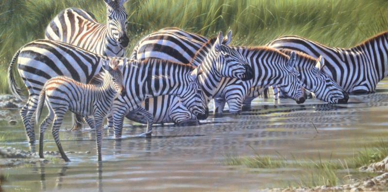 Tony Pridham, Australian artist specializing in wildlife