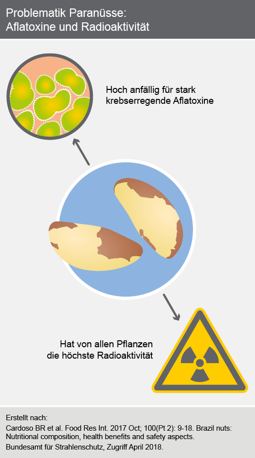 Problematik Paranüsse: Aflatoxine und Radioaktivität
