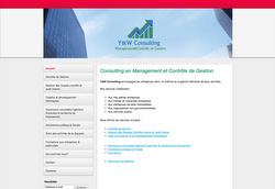 Le site de Y&W Consulting