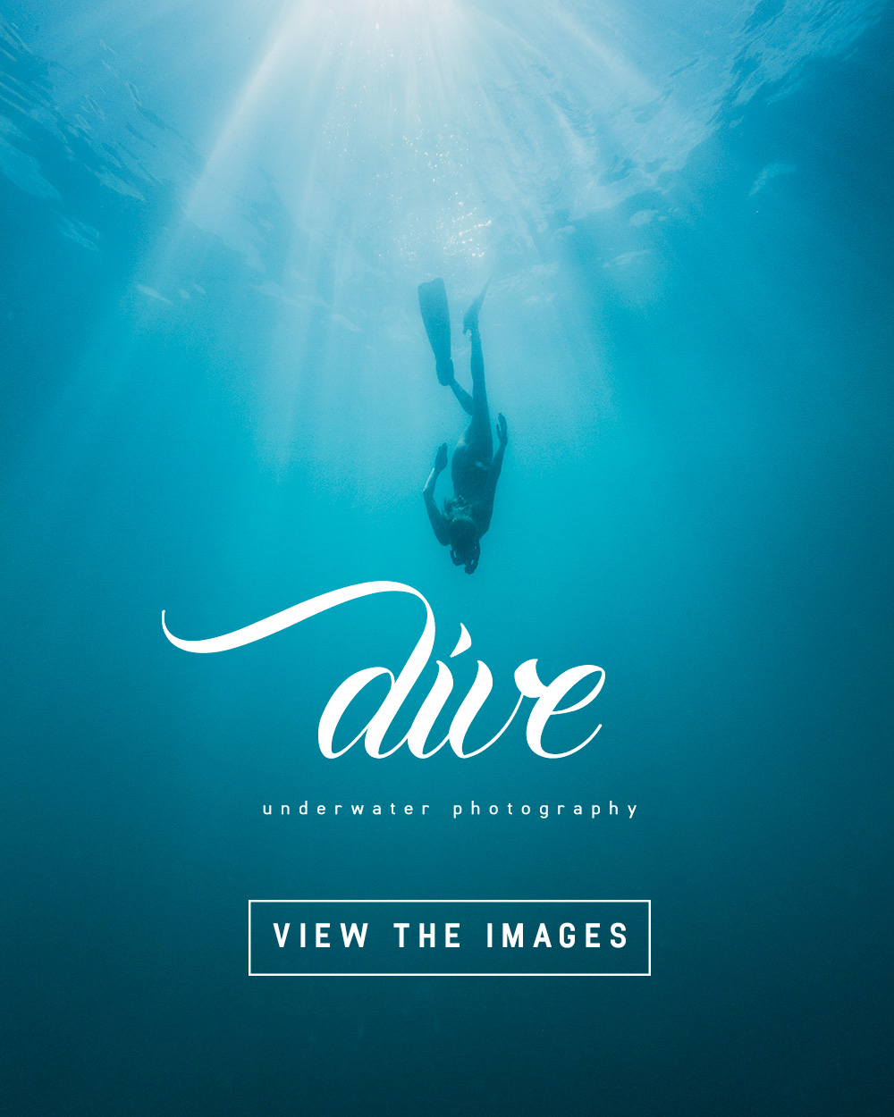 Dive: beautiful underwater photography