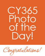 CY365POTD.jpg