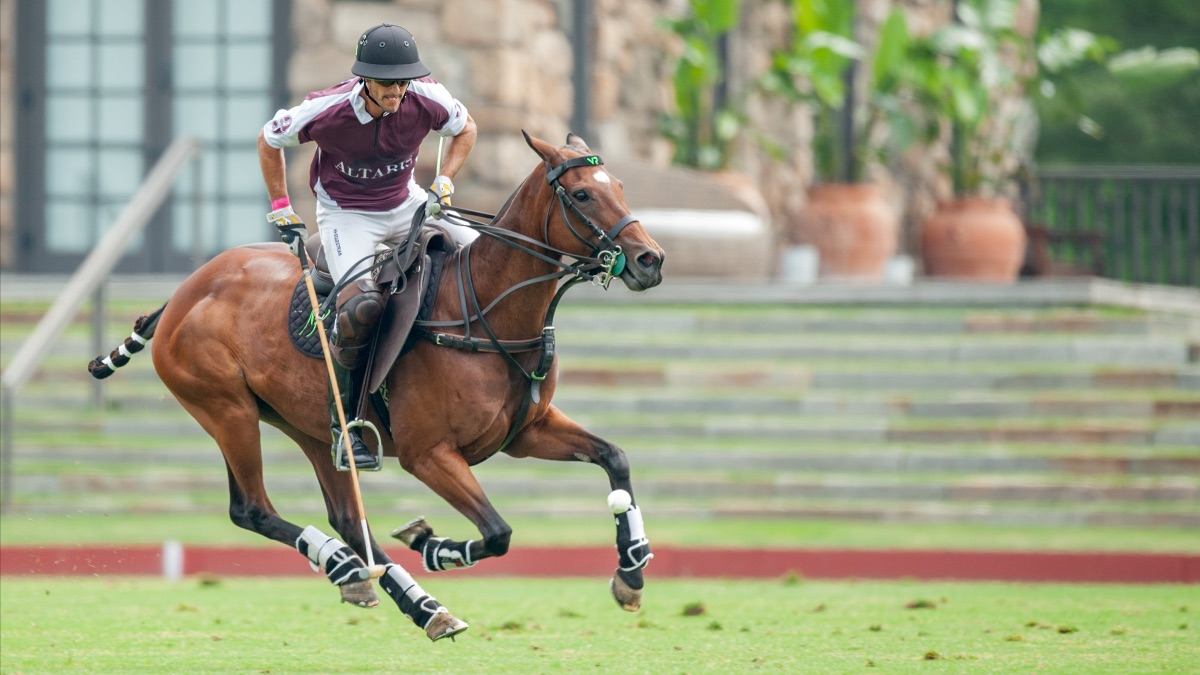 Giddy Up For This Sunday's Polo Match (and sunshine!)