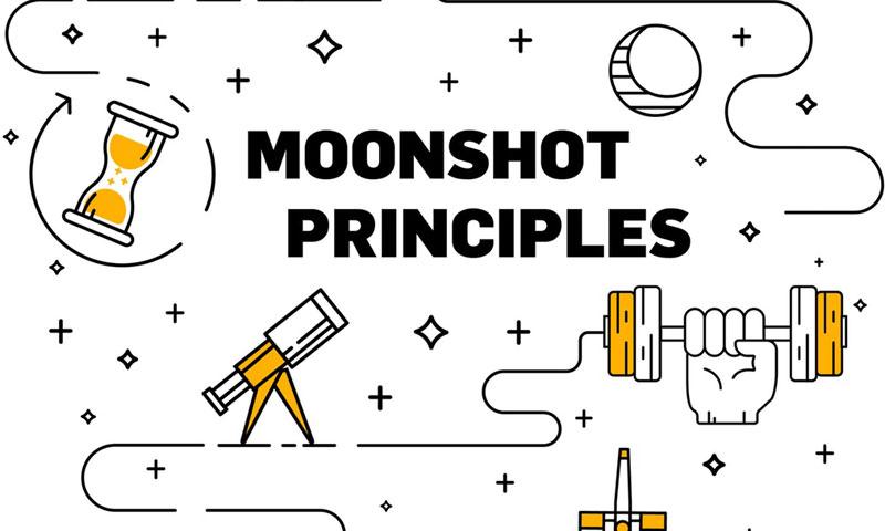 Moonshot Principles