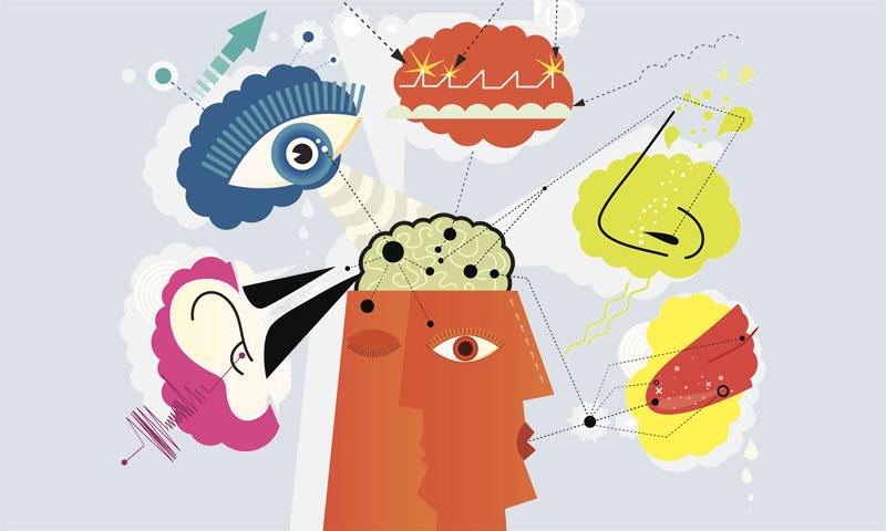 Better Health Through All Five Senses