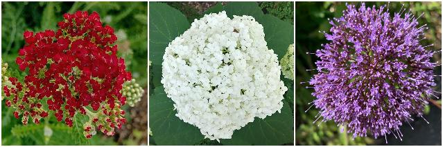 Gamble Garden Bloom Alert