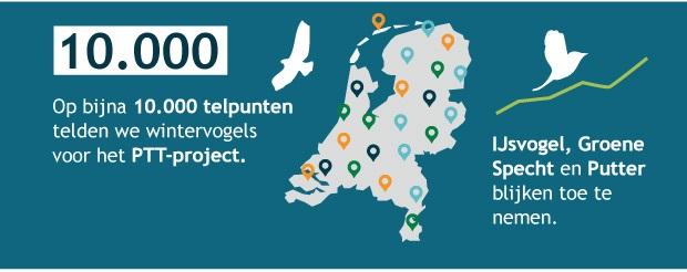 Op bijna 10.000 telpunten telden we wintervogels voor het PTT-project