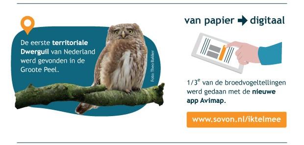 Van papier naar digitaal. 1/3e van de broedvogeltellingen werd gedaan met de nieuwe app Avimap