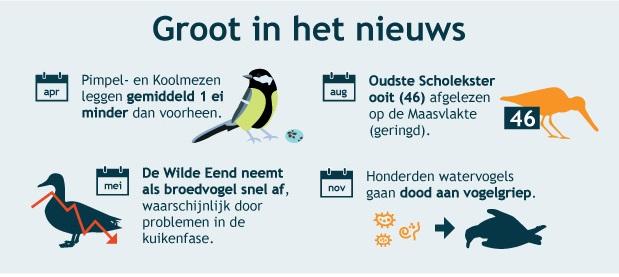 Wat vogelden we uit in 2016? Jaaroverzicht Sovon Vogelonderzoek Nederland