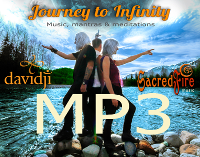 Journey to Infinity MP3 album download cover