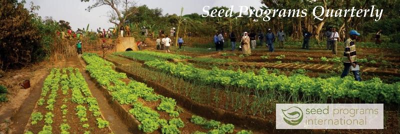 Image: Beautiful African Vegetable Garden