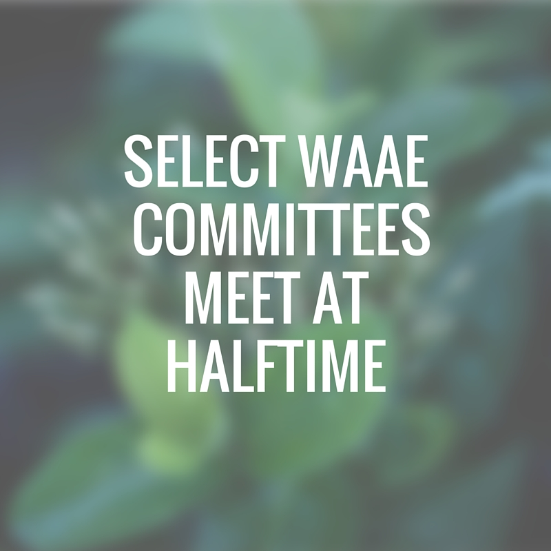 Select WAAE committees meet at Halftime