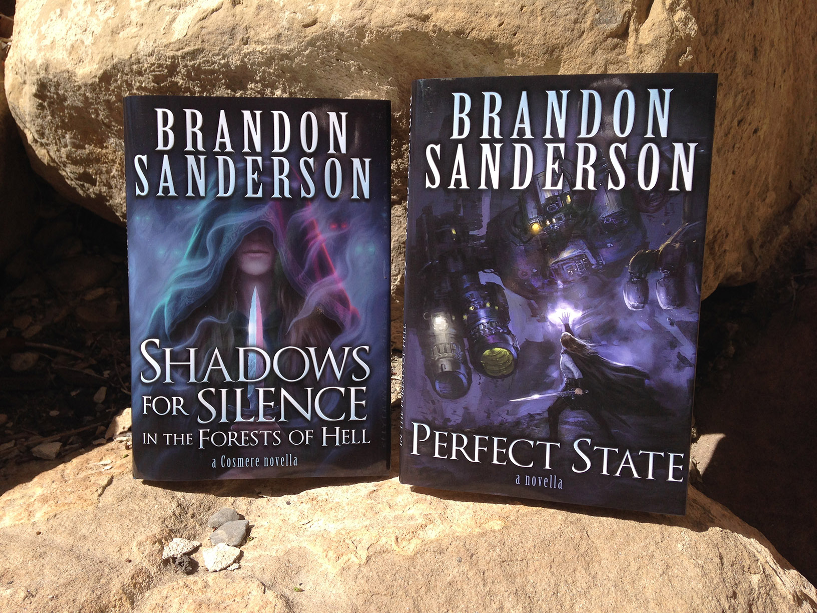 Shadows for Silence in the Forests of Hell + Perfect State double hardcover