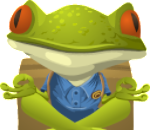 Frog seated in a yoga position