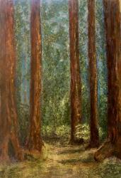 "©Linda Snouffer, Redwoods, chalk pastel on watercolor paper, 24"" x 18"""