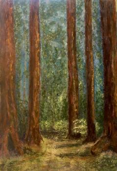 """Redwoods,""  original chalk pastel on watercolor paper;  matted.  ©Linda Snouffer, Botanical Printmaker        Lindasnouffer.com"