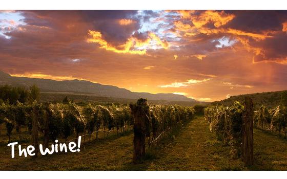 Argentina the wine