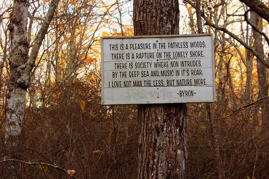 sign in the woods