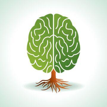 あなたは美しい脳を持っていますか?