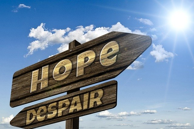A wooden sign with one arrow pointing to the right with text hope. And one arrow points to the left with text despair.