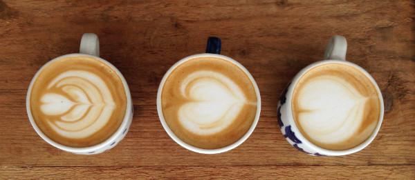 Vyberte si kávu, která vám bude chutnat