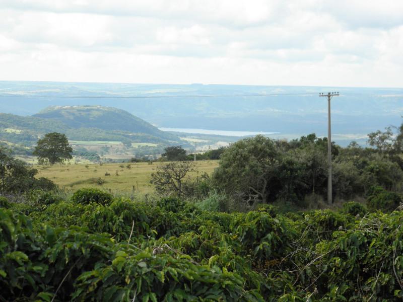 Okolí kávové farmy