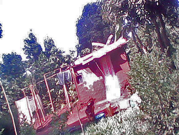 Damaged red pepper plantation and store of Kuluseni Iguru Tenywa. (Morning Star News)