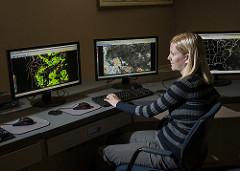 woman at computers