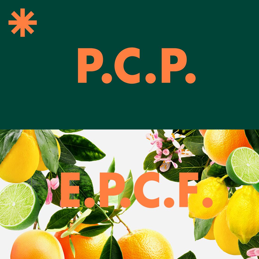 P.C.P. at E.P.C.F.