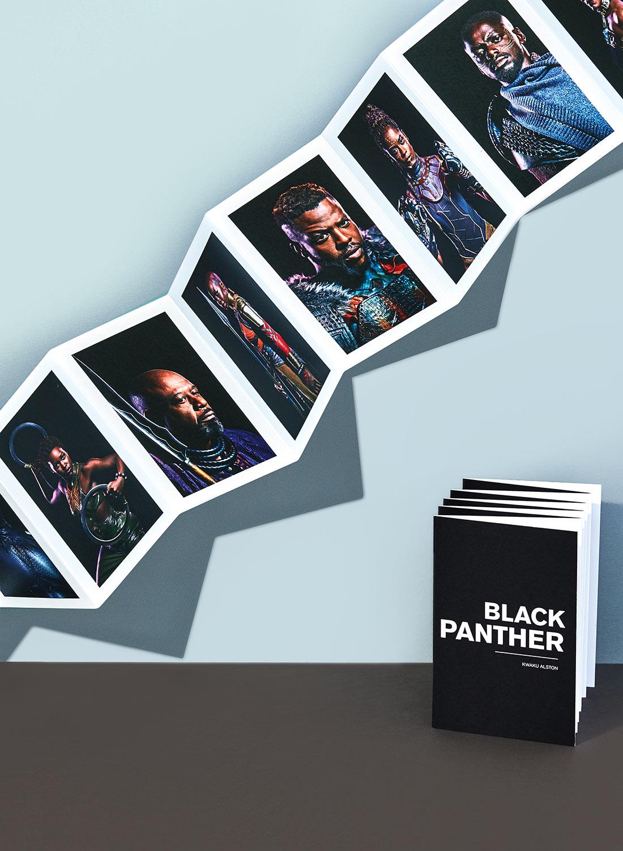 Black Panther Accordion