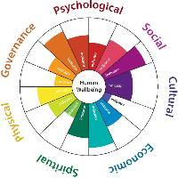 "A ""medicine wheel"" graphic that will be used to showcase HWB indicators. Image copyright Biedenweg et al."