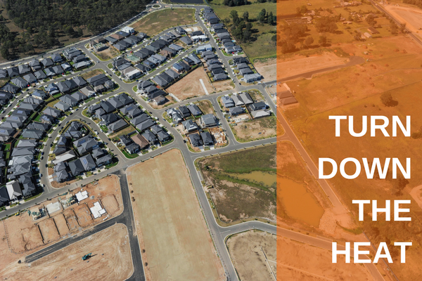 Aerial shot of greenfield housing development.