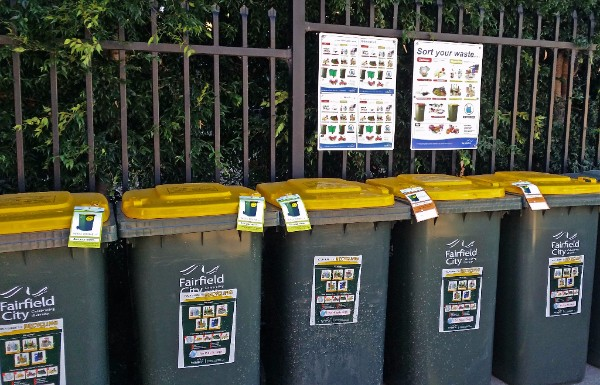 Recycling bins lined up neatly with clear signage and tagging.