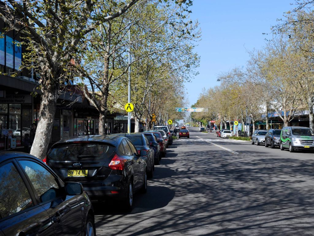 Cars with tree canopy on street