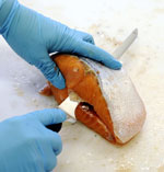 No illegal compounds found in Norwegian farmed salmon