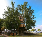 Campus tree house ship
