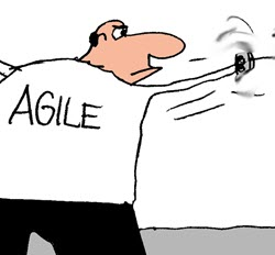 Humor: Agile vs. Waterfall - Resolving the Difference