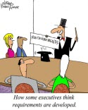 Humor: Executive Perspective: Requirements Development