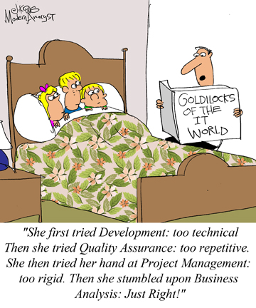 Humor: Goldilocks of the IT World