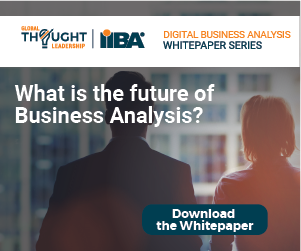 The IIBA Global Business Analysis Core Standard