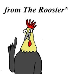Humor: Advice for the budding Business Analyst... from The Rooster