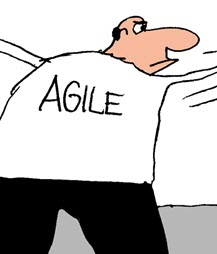 Humor: Agile vs. Waterfall - Resolving the Differences