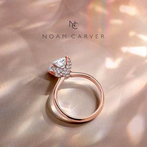 Noam Carver