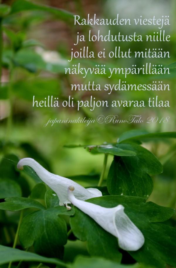 Runotalon voimakortti Rakkauden viestejä ja lohdutusta
