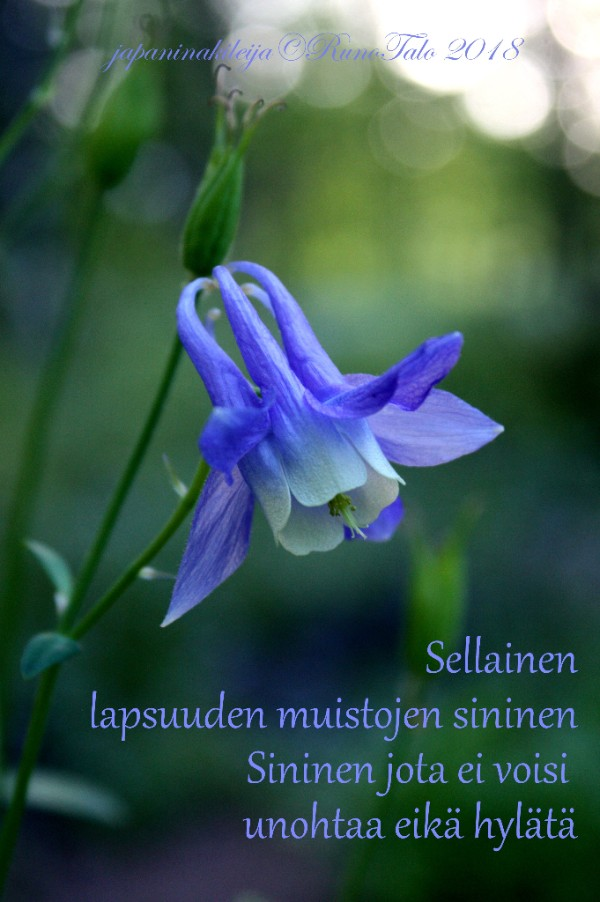 Runotalon voimakortti Sellainen lapsuuden muistojen sininen